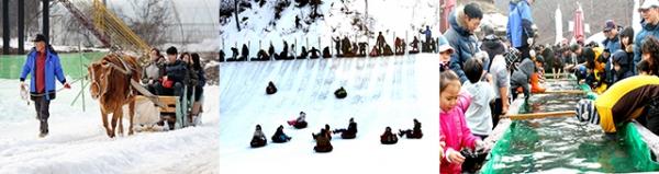 충남 청양 알프스마을에서 도민들이 소썰매와 눈썰매, 빙어잡기 등을 하며 즐거운 시간을 보내고 있다(충남도청 제공)